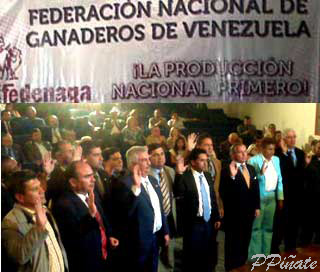 fedenaga240909web.jpg